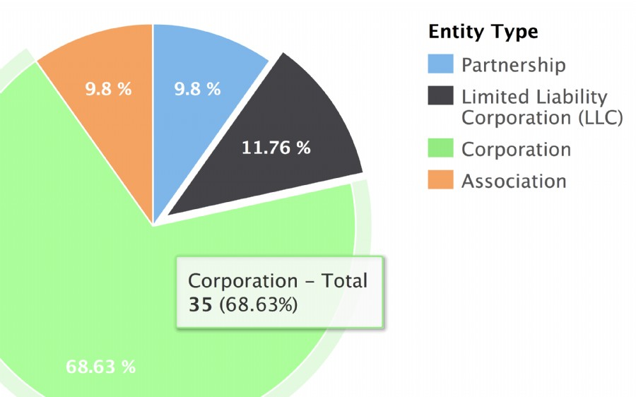 Most common types of entities in the United States